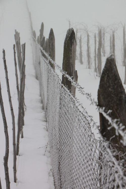 šaltas,tvora,sušaldyta,geležis,balta,viela,žiema