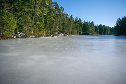 collins lake washington  frozen lake  washington snowstorm 2019