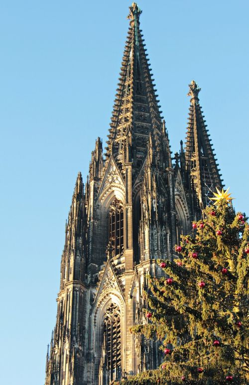 cologne cathedral dom christmas
