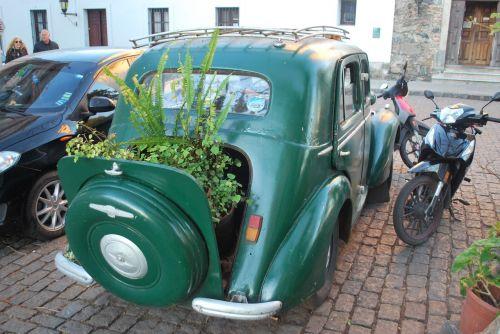 colonia del sacramento old car uruguay
