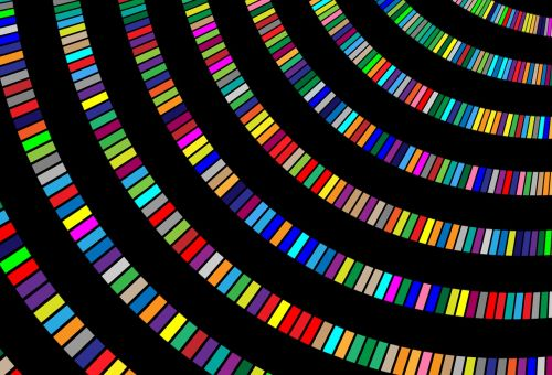 color swinging circle