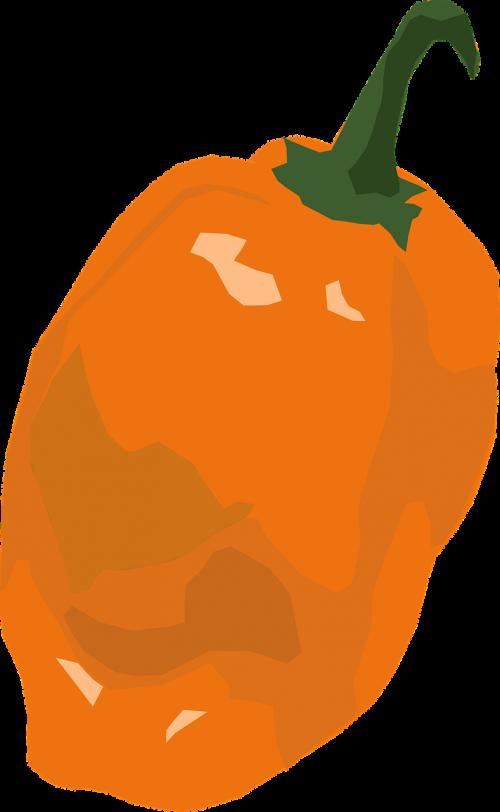 spalva,spalva,maistas,oranžinė,pipirai,nemokama vektorinė grafika