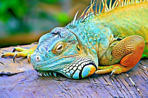 color reptile eye