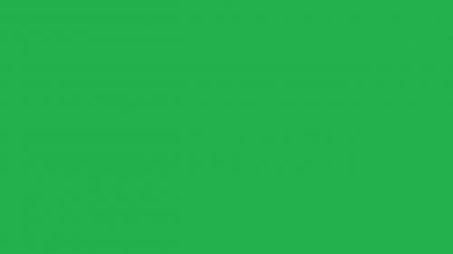 spalva,penkiasdešimt spalvų atspalvių,vaivorykštė