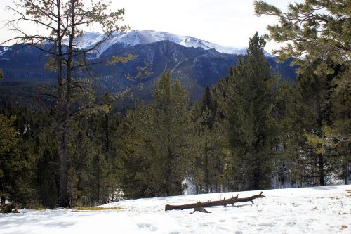 colorado pikes peak hiking
