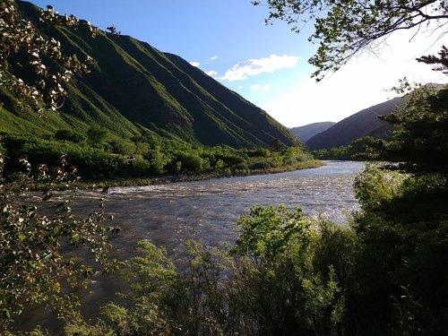 colorado river  colorado  nature