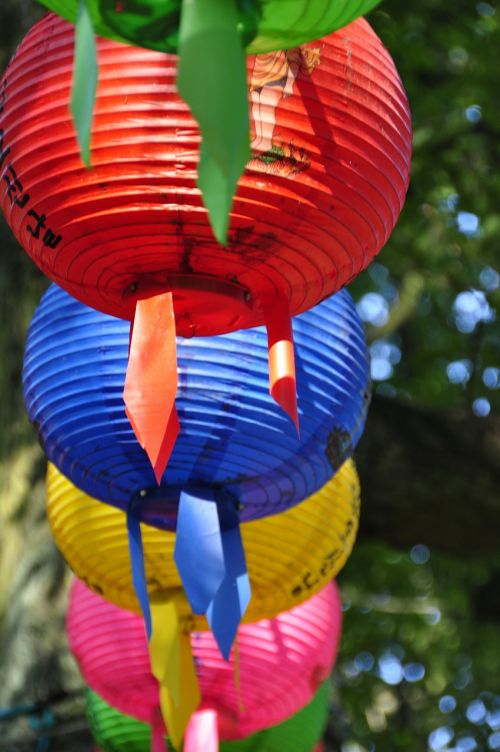 colorful lampion red