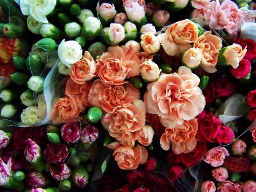 colorful flower bouquets cut flower multi-colored carnations