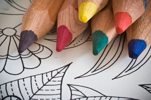 coloring book for adults colored pencils coloring book