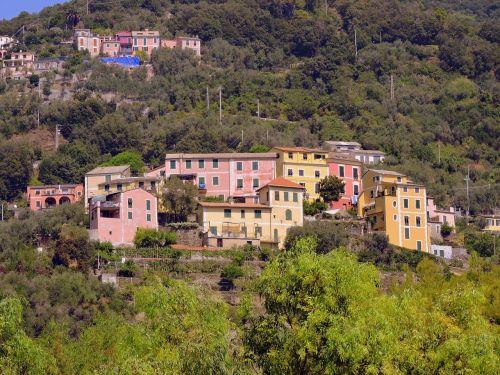 colourful houses cinque terre mountain