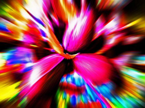 Colourful Pecan Nut Trio Zoom