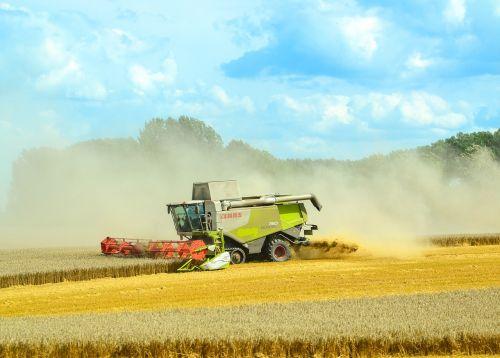 combine harvester agriculture harvest