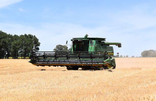 combine harvester harvest wheat