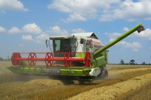 combine harvester harvest