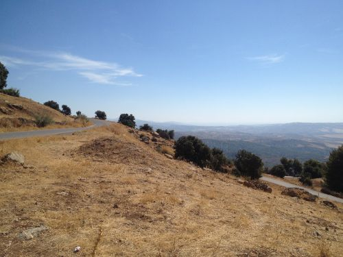 companion road mountain