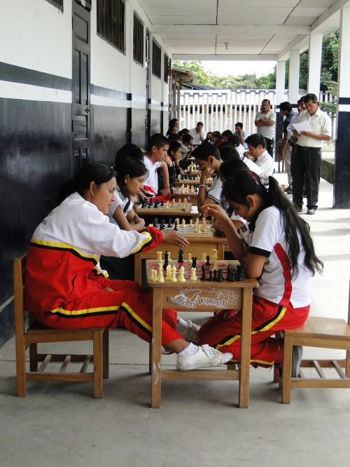 competition sports chess