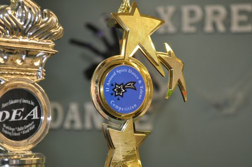 competition award trophy