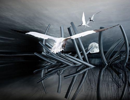 composing structures desktop background