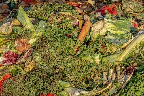 compost  garbage  biological