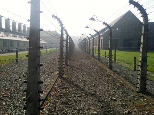 concentration camp holocaust auschwitz