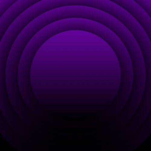 Concentric Circles 2