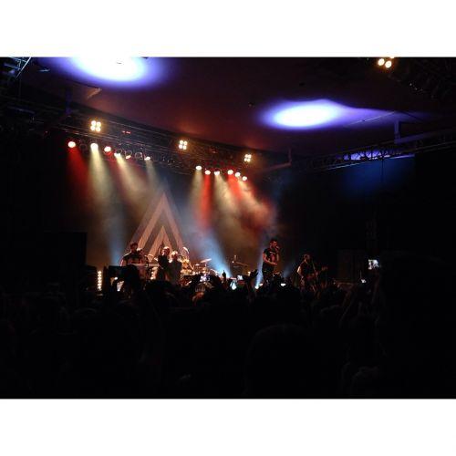 concert show musician