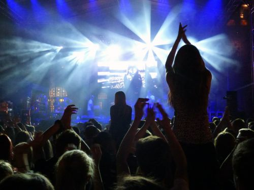 concert event fan