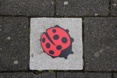 concrete slab deco ladybug