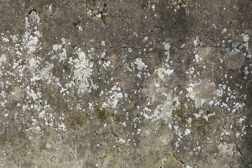 concrete wall  wall  weave