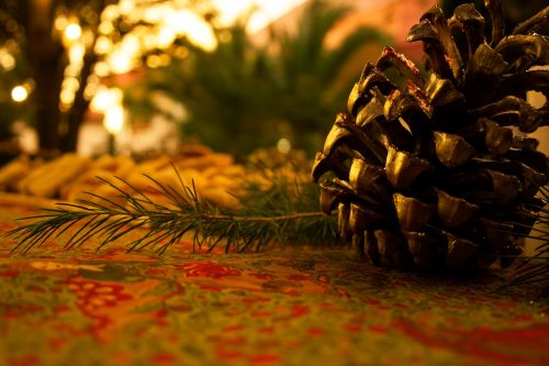 cone pine cone christmas