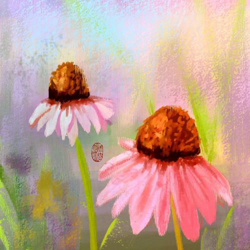 cone flowers digital painting nature