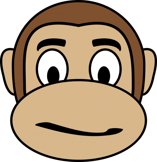 confused face monkey