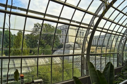 conservatory greenhouse green house