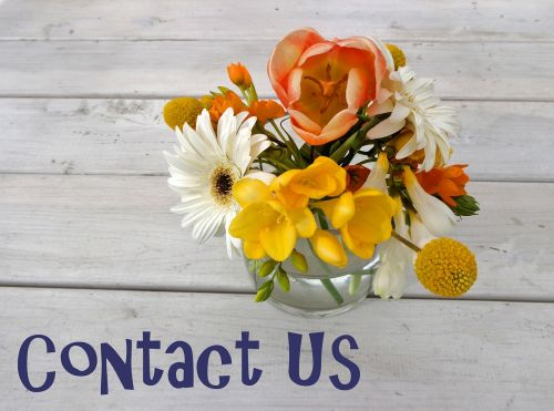 contact us contact friendly