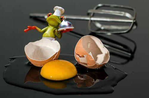 cook egg frog