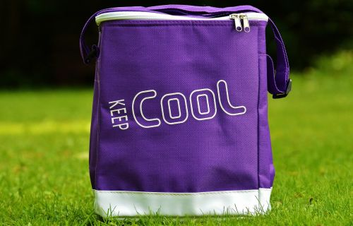 cooler bag cool coolness