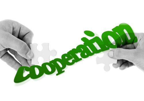 bendradarbiavimas,rankos,pirštas,galvosūkis,galvosūkiai,Dalintis,prisijungti kartu,sanglauda,kartu,partnerystė,komandinis darbas,komanda