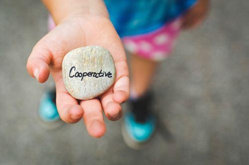 cooperative stone cooperation