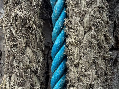 cord leash old