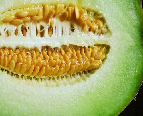 core melon cantaloupe