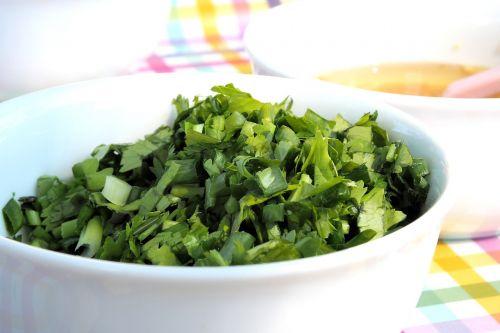 coriander seasoning food