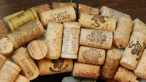 cork stoppers cork viticulture