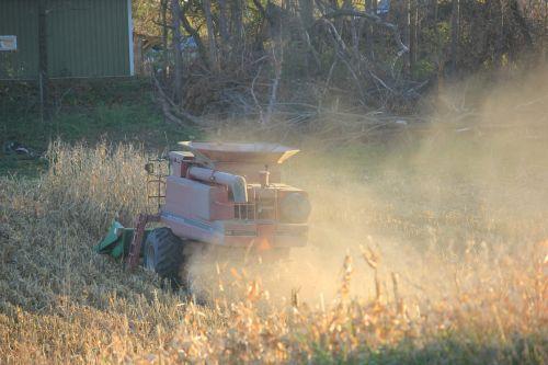corn corn picker agriculture