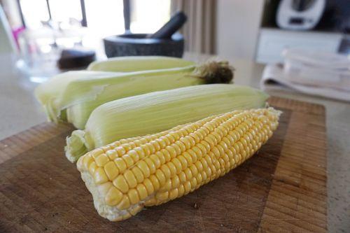 corn sweetcorn kitchen