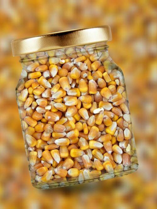 corn glass lid