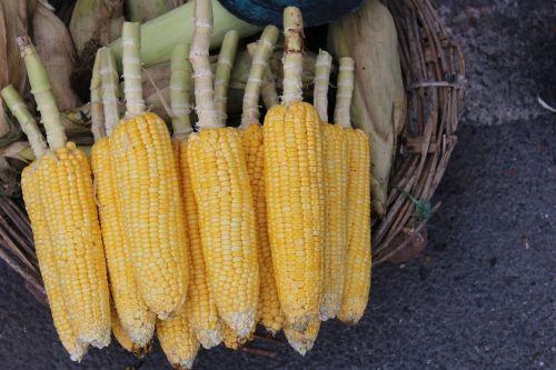 corn street sell