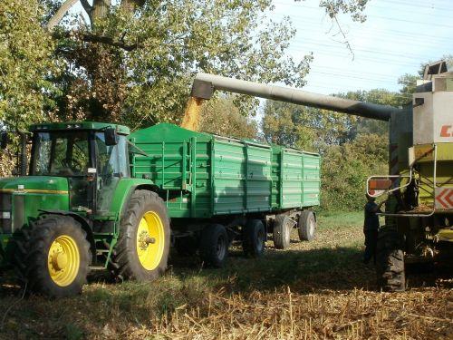 corn harvest rheinhausen