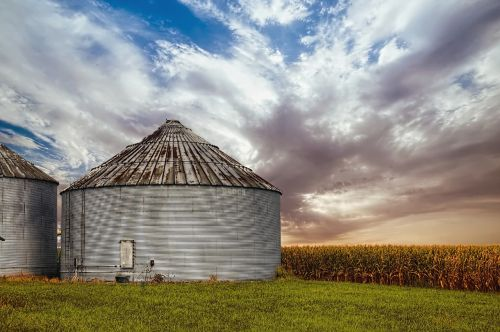 kukurūzų gudrybė,saulėtekis,Ohio,skaitmeninis menas,kaimas,vaizdingas,Šalis,kaimas,peizažas,shed,kateriai,ūkis,ūkiai,Žemdirbystė,žemės ūkio,sodyba,šampanas,apskritis,americana,nuotrauka,nuotrauka,struktūra,struktūros,sturgell,William Sturgell,sąskaitą,istorinis,namų dekoras,pastatai,debesys,dangus,medis,medžiai,Debesuota,dangus,piktžolės,Champaign county,urbana