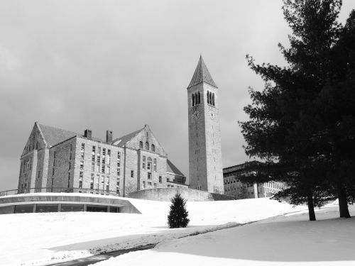 cornell university college u