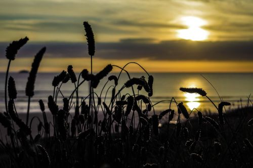 cornwall sunset sea